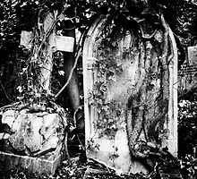 Highgate Cemetery by Lea Valley Photographic