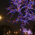 Street Christmas Trees #2 by Carole Brunet