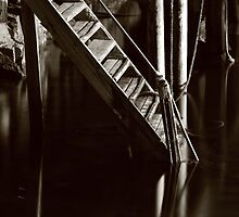 Wood ladder by Willy Vendeville