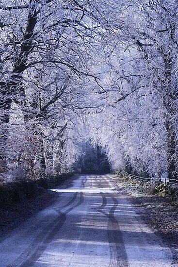 Crystal Lane by AndrewBlackie