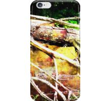 Stairs to Nowhere Silky FX iPhone Case/Skin
