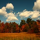 Autumn in Virginia by Greg Hess