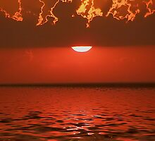 rays of red by Cheryl Dunning