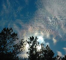 Iridescent Skies  by Paul Gitto