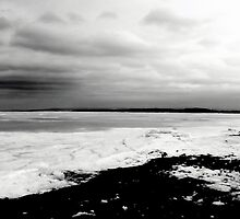 Frozen Shore by Kathleen   Sartoris