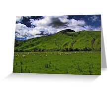 The New Zealand Countryside Greeting Card
