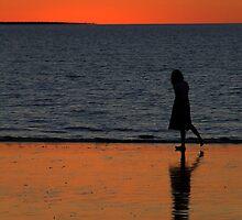 Mindelsilhouette by Donna Raymond