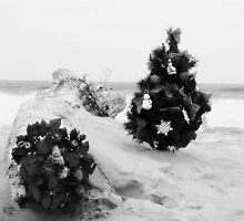 Christmas by the Sea by Barbara Gerstner