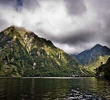 Doubtful Sound, New Zealand (4) by Trishy