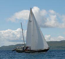 West Highland Week 2007 - Glenafton 795C by Alisdair Gurney