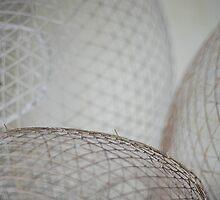 traditional fish trap by narabia