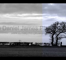 Feature-3 by Daniel James
