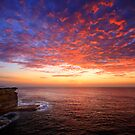 Royal National Park by Geoff  Coleman - Landscapes