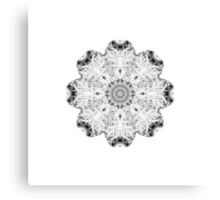 """Spirit of India: Fleur"" in white, grey and black Canvas Print"
