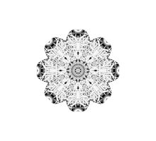 """Spirit of India: Fleur"" in white, grey and black Photographic Print"