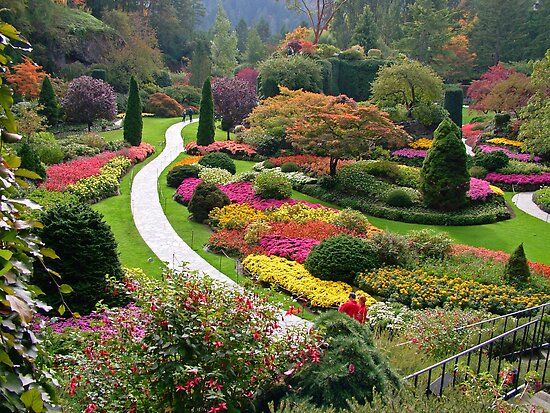 Butchart Gardens Victoria Bc In The Fall By Anndixon Redbubble