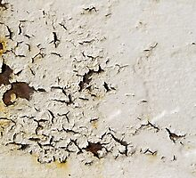 Peeling Paint 1 by rdshaw