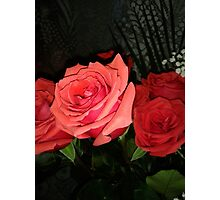 Roses 2 Photographic Print