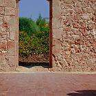Sicily Wall 01 by Adrian Rachele