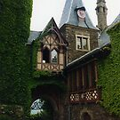 COCHEM CASTLE GERMANY by DIANEPEAREN