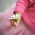little hand little flower by Laura  Cioccia