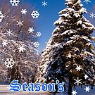Christmas Card - Season&#x27;s Greetings A Collaboration With Cherylc1 by reflector