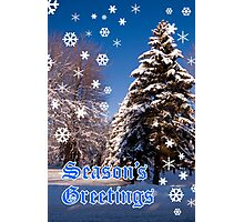 Christmas Card - Season's Greetings A Collaboration With Cherylc1 Photographic Print