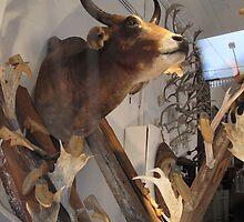 Tarlo & Graham - Load of Old Bull by skyhorse