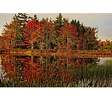Reflection Island Photographic Print