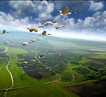 Freedom by Igor Zenin