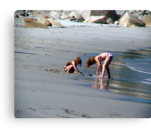 Two in the Sand Canvas Print
