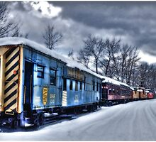 The Snow Train by Wayne King