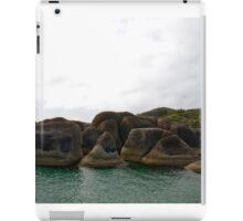 William Bay iPad Case/Skin