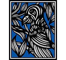 Mcnew Parrot Blue White Black Photographic Print
