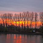 A new day dawning over the Rhine river by SUBI
