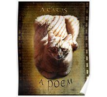 A cat is a poem Poster
