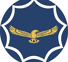 Roundel of the South African Air Force  by abbeyz71