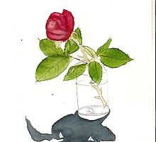 rose in a jar study by taariqhassan