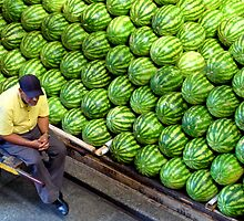 Water melons by amulya
