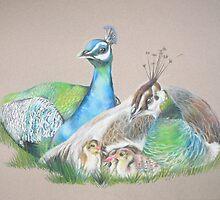 Sapphires and Emeralds by Lyrebird