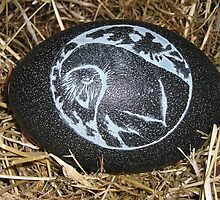Barn Owl - Emu Egg Carving by Lyrebird