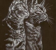 Staring Cats by Lyrebird