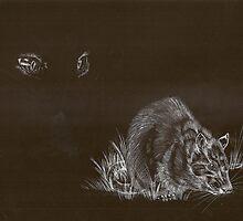 Watchful Eyes by Lyrebird