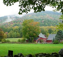 Barn in Mt. Holly, VT by jansnow