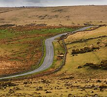 Dartmoor road by Andy Pearson