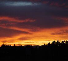 Sunset In Washington State by Misti Love