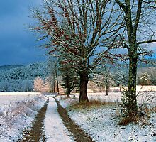 CADES COVE,WINTER by Chuck Wickham