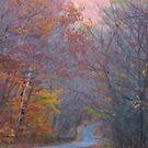 Fall Roads by ChereeCheree