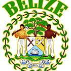 Belize Coat of Arms by ukedward