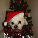Seasons Greetings from Mickey by Sharon Stevens